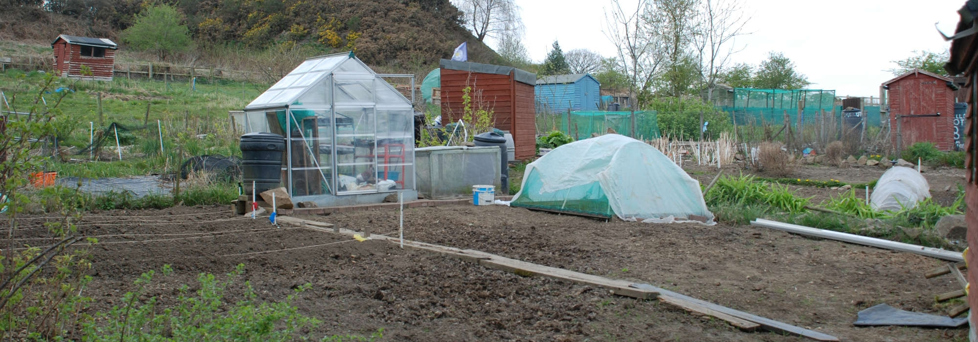 Allotment, soil at forefront of photo, sheds and greenhouses in background, hill can be seen in the very background of photo